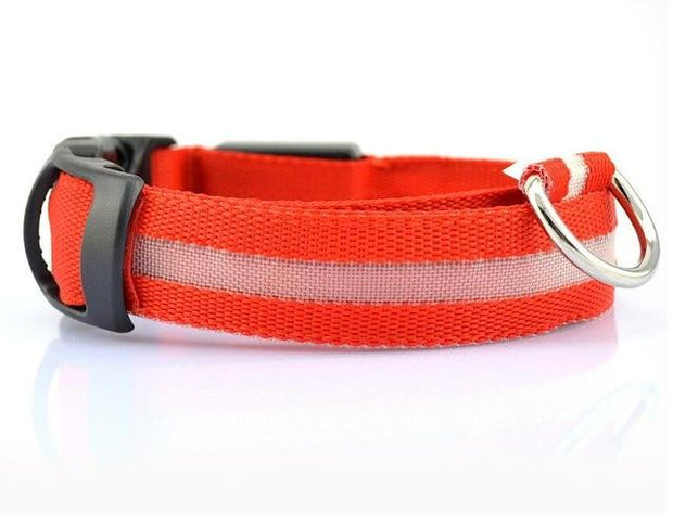 LED Pet Dog Collar wowstore Collar-Red L