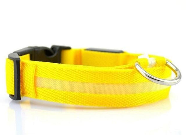 LED Pet Dog Collar wowstore Collar-Yellow L