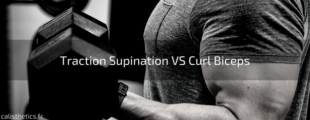 Traction Supination VS Curl Biceps