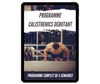 Programmes Street Workout/Calisthenics
