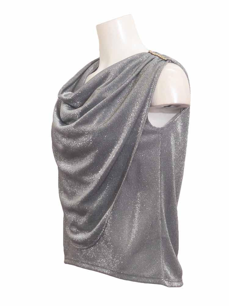 Sabra Metallic Sleeveless Top