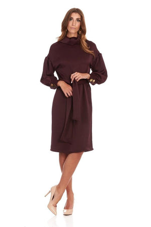 Bella Donna Burgundy Satin Dress