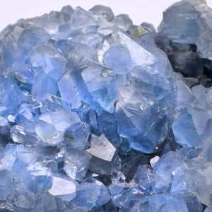 Celestite Crystal (#1)
