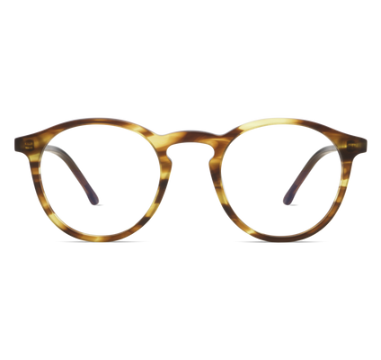 MARTIN / GRAND BUMBLEBEE / OPTICAL FRAMES