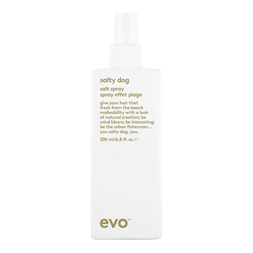 Evo Salty Dog Salt Spray available at Viva La Blonde