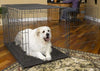 Dog Using Midwest Select Triple Door Metal Pet Crate