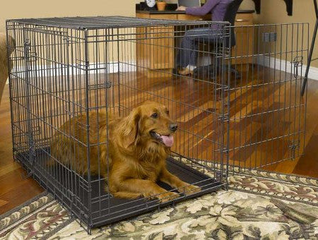 Dog in Midwest Select Triple Door Wire Dog Crate