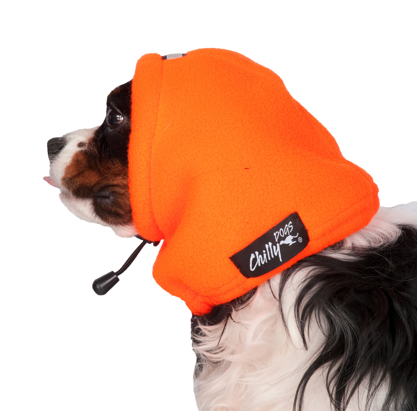 winter head muff for dogs