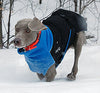 Chilly Dogs Great White North Winter Dog Coat in Blue Fleece