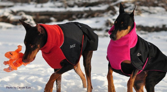 Chilly Dogs Great White North Fleece Dog Coat in Red & Pink