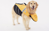 Pet Wearing Doggles Dog Life Jacket with Attachable Head Support