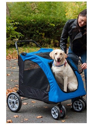 Dog Riding in Expedition Pet Stroller Review
