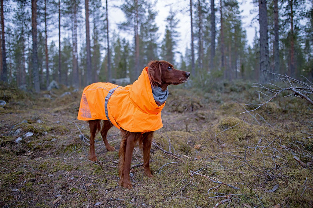 warmest dog coat for winter in visible orange