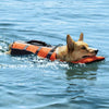 Guardian Gear Deluxe Dog Life Jacket with Head Support