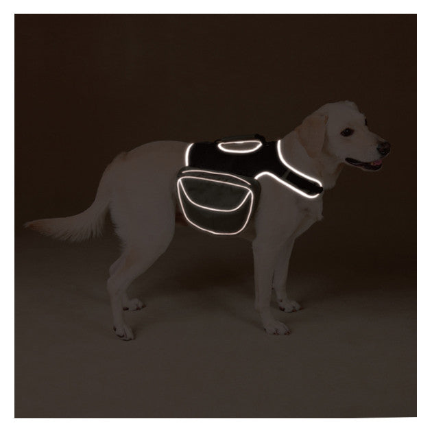 Visibility Dog Backpack in Low Light by Guardian Gear