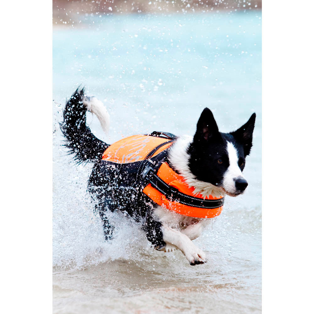 Hurtta Dog Life Jackets for Active Dogs
