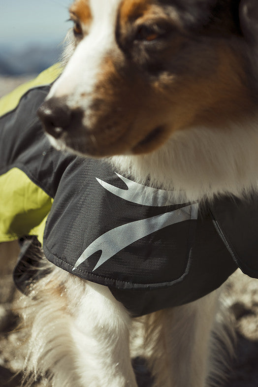 Ultimate Warmer Dog Jacket Front View