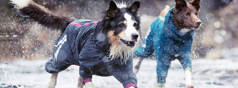 Waterproof Hurtta Slush Combat Suit for Dogs