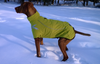 Waterproof & Windproof Hurtta Frost Winter Dog Coat