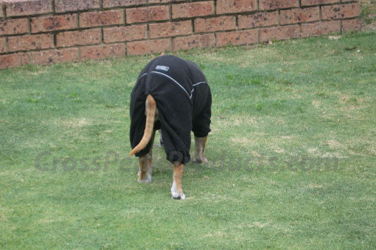 hurtta one piece fleece sweater for dogs rear view