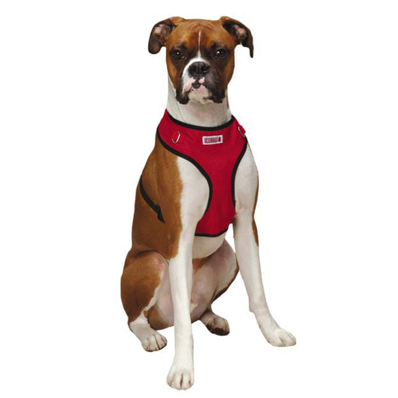 Kong Dog Harness Detached from Dog Coat