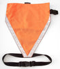 Mendota Blaze Orange Hunting Vest for Dogs