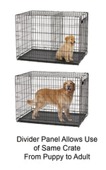 midwest life stages ace dog crates with maxlock door system