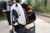 Mochi Pet Stroller by PetZip for Small Dogs