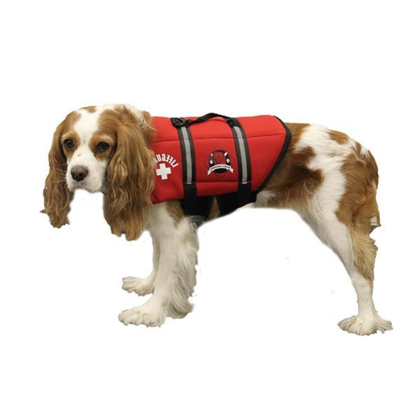 Paws Aboard Lifeguard Neoprene Dog Life Jacket