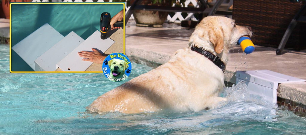 Paws Aboard Pool Pup Steps