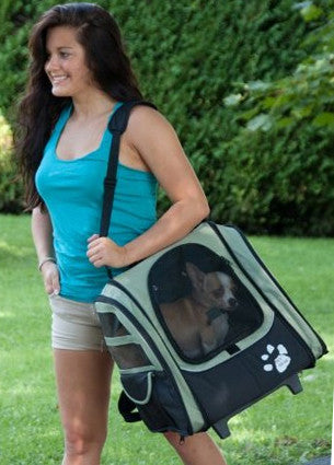 Shoulder Tote Carrier for Small Pets