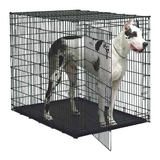 Midwest Extra Large Dog Crates