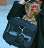 Dog in Sherpa Pet Ultimate on Wheels Dog Carrier