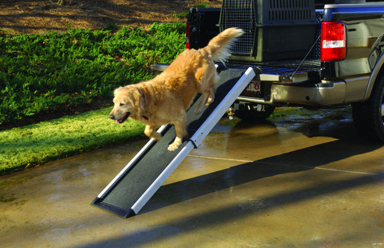 Regular Size Mr. Herzher's Smart Dog Ramp