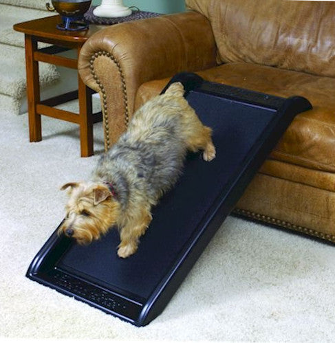 Junior Size Mr. Herzher's Smart Dog Ramp