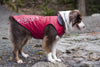 RC Pet Products Venture Dog Raincoat in Boysenberry