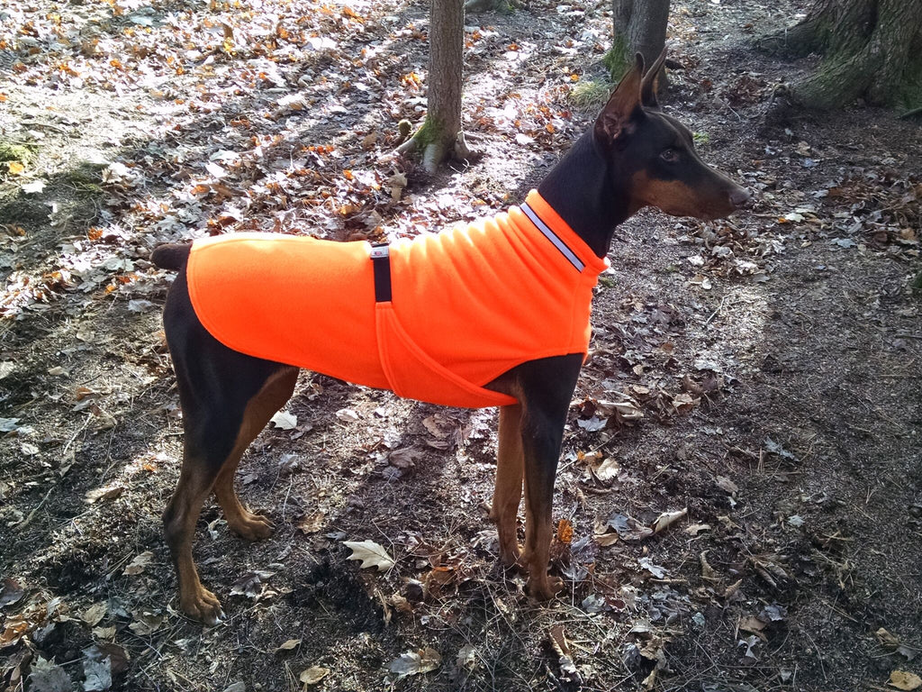 doberman dog sweater