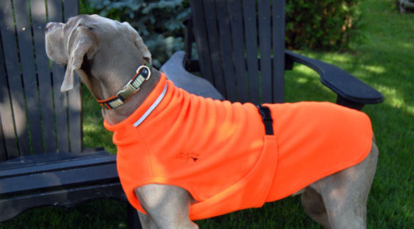 Fleece Dog Sweater in Blaze Orange for Hunting