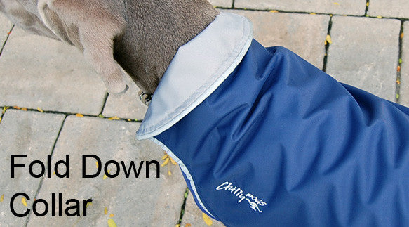 Rain Slicker Coat with Fold Down Collar for Dogs
