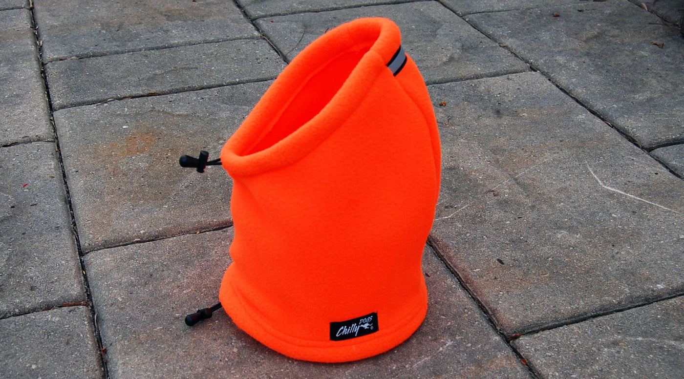 orange dog hoodie hat
