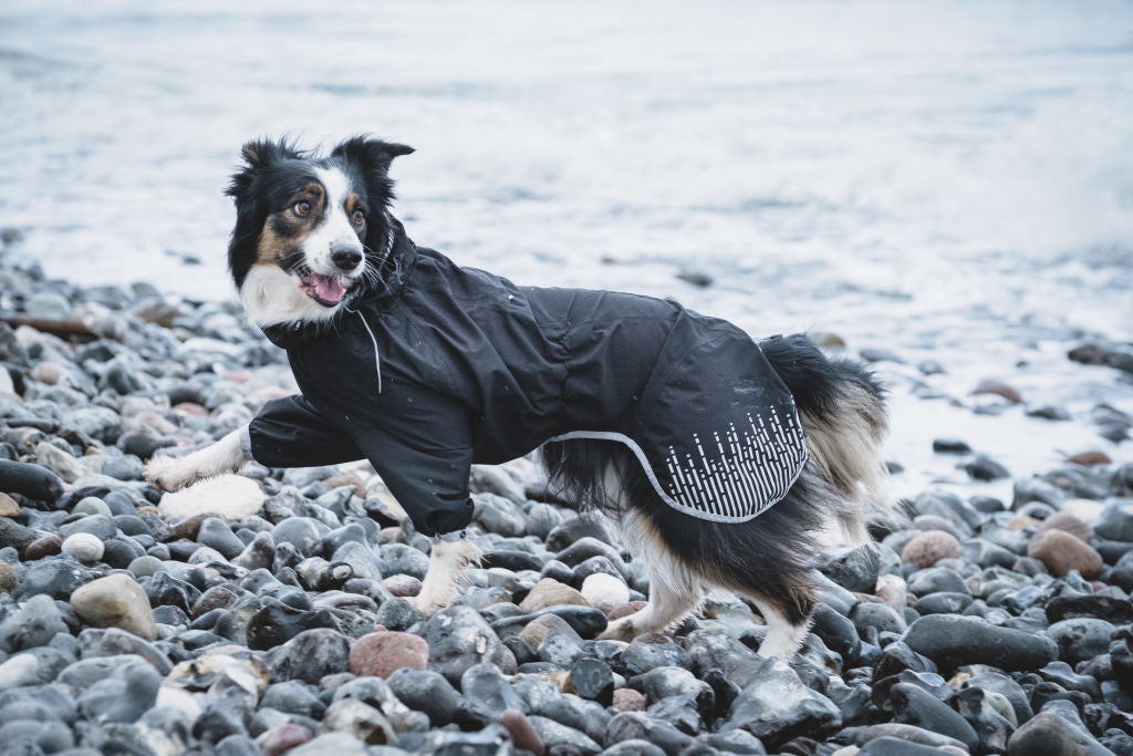 hurtta-rain-blocker-raven-waterproof-jacket-for-dogs