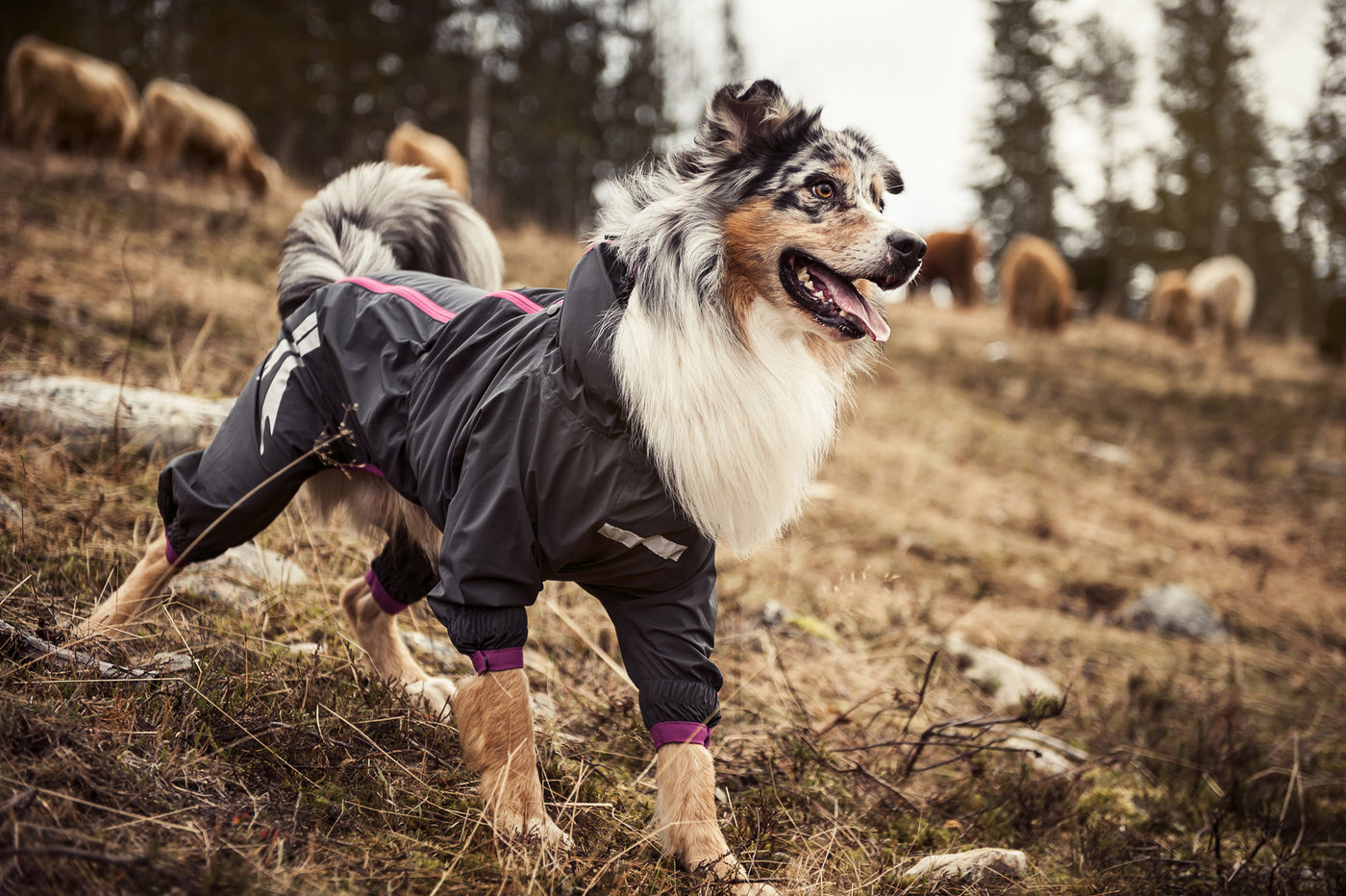 Hurtta Waterproof Slush Combat Suit Dog Coat