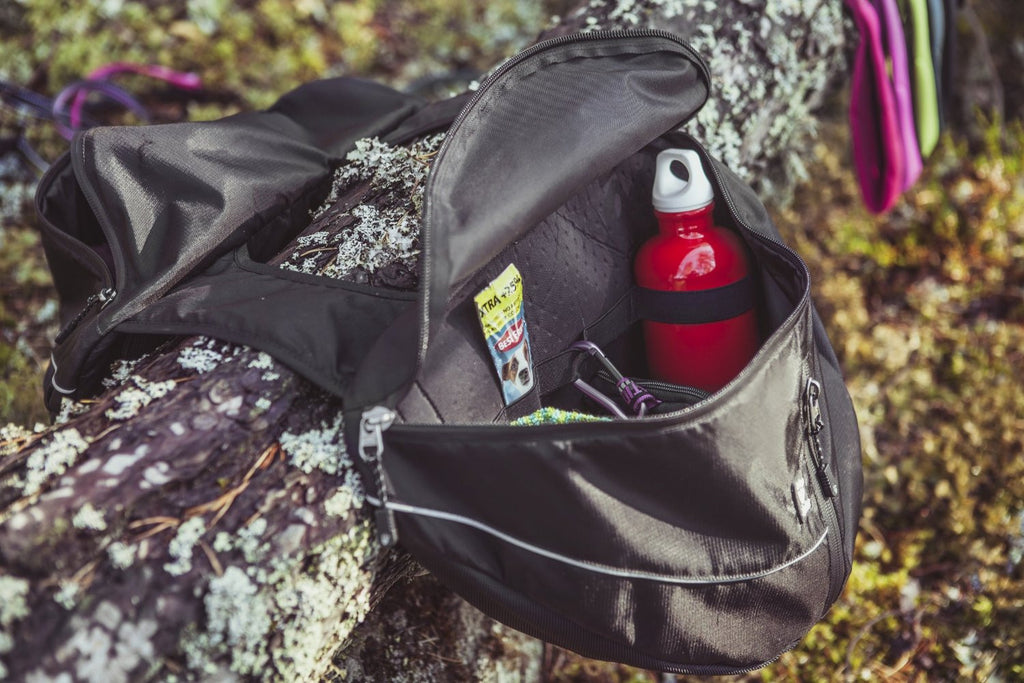 roomy dog backpack for hiking and camping