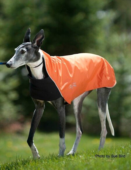 orange fleece lined jacket for dogs