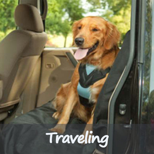 Traveling Dog Products