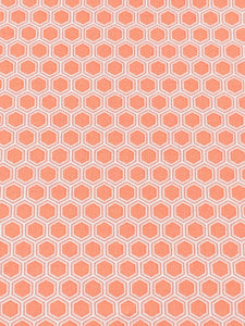 Robert Kaufman- Bees Knees Coral Fabric
