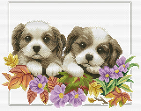 No-Count Cross Stitch Packs