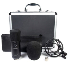 Load image into Gallery viewer, Stellar X2 Large Capsule Condenser Microphone