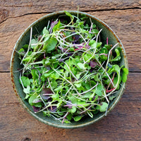 Microgreens Mix - 1 oz