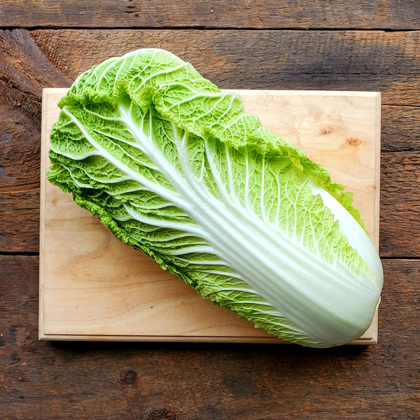 Napa Cabbage ~ 2.5 lb Head